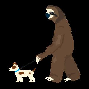 Gassi gehen mit Faultier und Hund