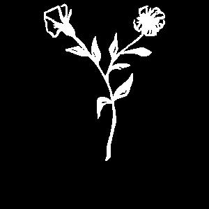 Blumen, Blume, Pflanze, Pflanzen, Blüten, symbol,