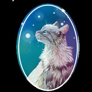 Graue Katze Sterne Jayfeather Häherfeder