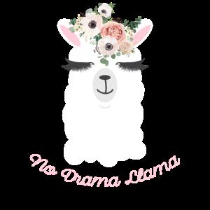 Kein Drama-Lama