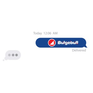 BULGEBULLTEXT