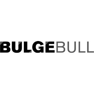 bulgebull logo