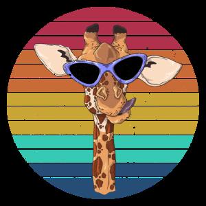 Coole Giraffe mit Sonnenbrille