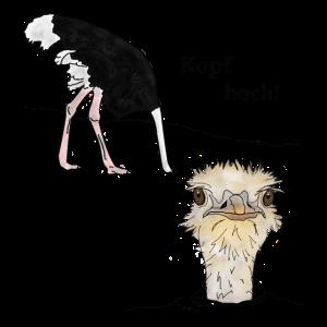 Kopf hoch, Vogel Strauss
