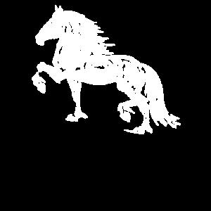 Pferd, Pferde, Reiten, Reiterin, Hengst, Rennen, S