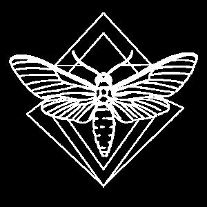 Motte Skull Schädel Insekt Tattoo Schmetterling B