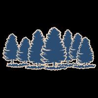 Wandern im Freien im Kiefernwald Outdoor Geschenk