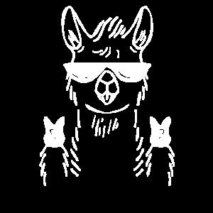 Lama, lamas, symbol zeichen illustration, no probl