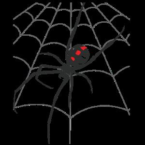 Halloween Gruselige Spinne Netz Schwarze Spinne