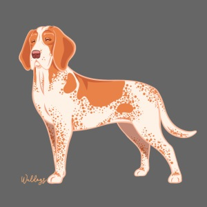 Bracco Italiano Dog