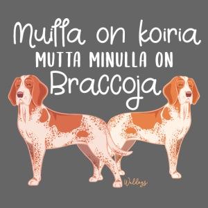 Bracco Italiano Koiria