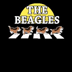 Beagle Hund Hunde Hündchen