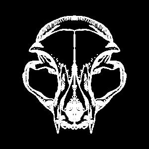Katzen Schädel Halloween Sketch Cat Skull