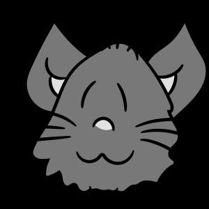 gesicht kopf süße niedliche katze kätzchen flausch