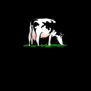 Rindfleisch krümelt nicht - Rind - Kuh Rinderfilet