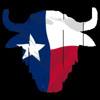 Buffalo Skull Texas Flag