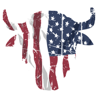 Buffalo Skull USA Flag