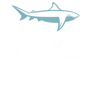 I'm not so bad - Haifisch, Hai, Hammerhai