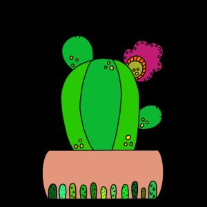 The Pretty Kaktus