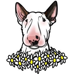 Bullterrier Daisies