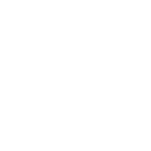 Heartbeat Inverter white