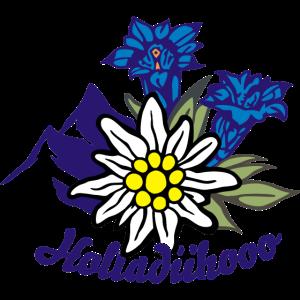 edelweiss_mit_enzian_und_bergen_holladii
