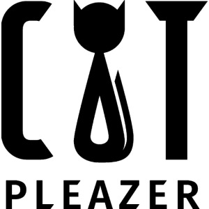 Cat Pleazer Schwarz
