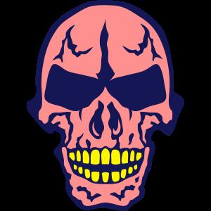 schaedel tot kopf skelett 506