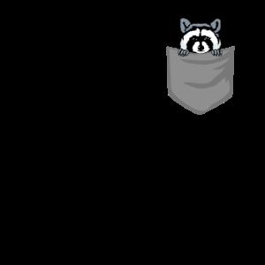 Waschbär in Brusttasche Bär in Tasche Geschenk