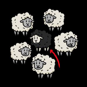 Ba-black Sheep