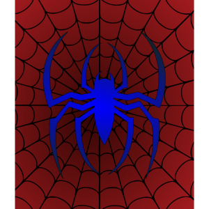 Spinne auf ihrem Spinnennetz