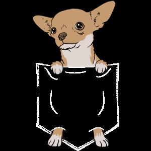 Hund Chihuahua in der Tasche Chihuahuas Geschenk