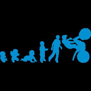 menschliche studie evolution