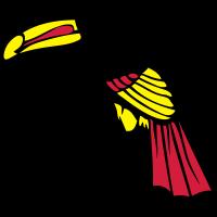 tukan vogel vogelfeder 602