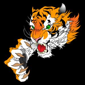 Tiger Kopf mit Pranke