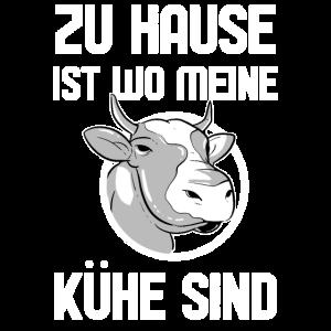 Kuhhaltung Tierhaltung Tier