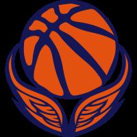basketball sport logo fluegel 0