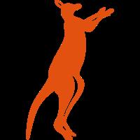 kangaroo stehen wilde tiere 0