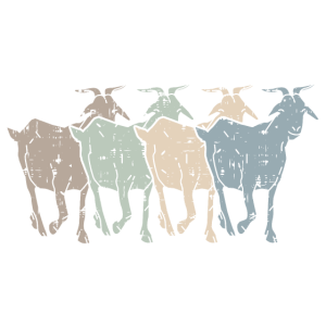Ziegen sind Therapie | Goats are Therapy