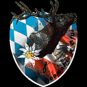 NCD Hirsch mit Geweih