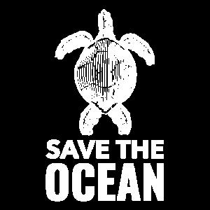 Ozean Schildkröte