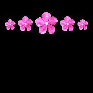 pinke Blumen mit Wassertropfen auf Blütenblätter