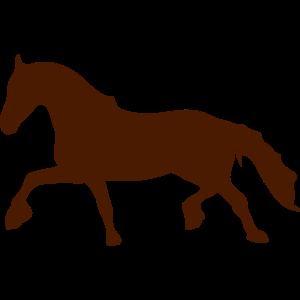 pferd schatten schatten figur 88