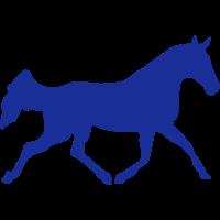 pferd schatten schatten figur 82