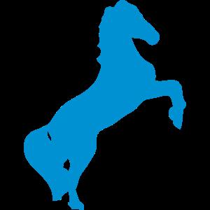 pferd schatten schatten figur 89