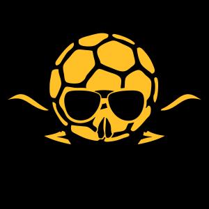 handball toten schaedel fluegel 705