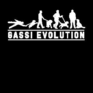 Hund Gassi Evolution