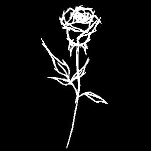 """Rose """"weiß"""""""