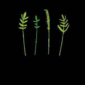 Pflanze im Glas Geschenk Idee