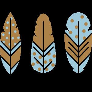 Vektor Federn dreifarbig in Deinen Wunschfarben